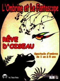 TdP_Rêve d'oiseau AFFICHE